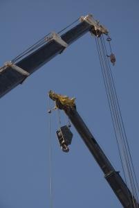 1342027_cranes.jpg